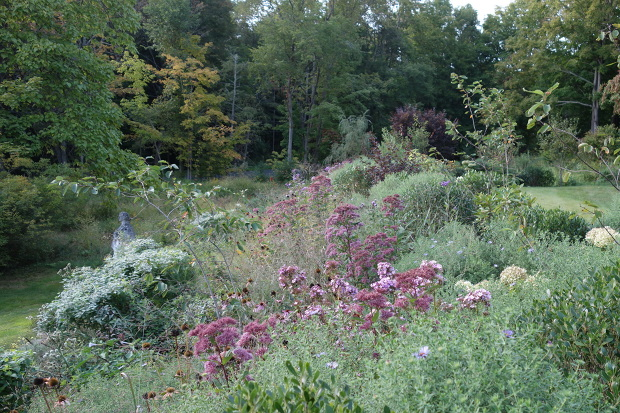 Pollinator Garden Mantis Plant Works